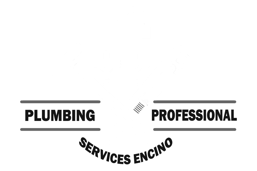 Plumbing Professional Services Encino